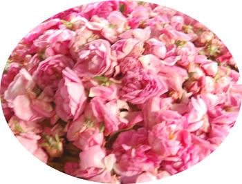 Medium Flower Tray